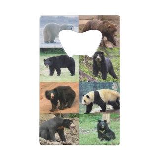 8 ours soutient pour toujours du monde