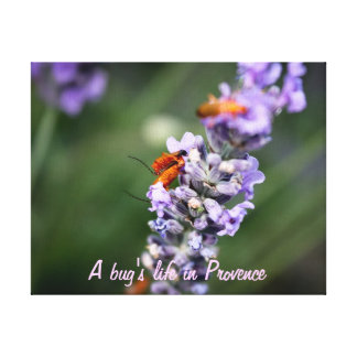 A bug's life in Provence Toile