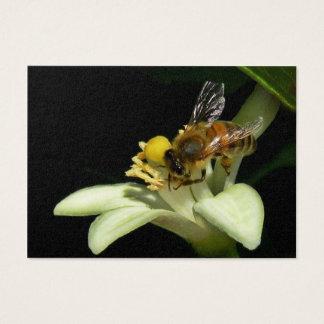 Abeille de miel sur la carte d'ATC de fleur de