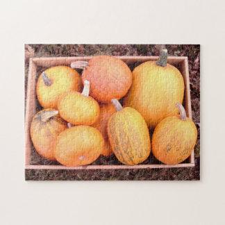 abondance de puzzle denteux de citrouilles