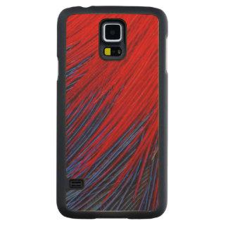 Abrégé sur plume de Toucanet Coque Mince En Érable Galaxy S5