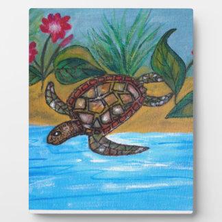 Accessoires de tortue ou de tortue photo sur plaque