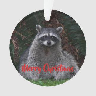 Acrylique de vacances de raton laveur de forêt
