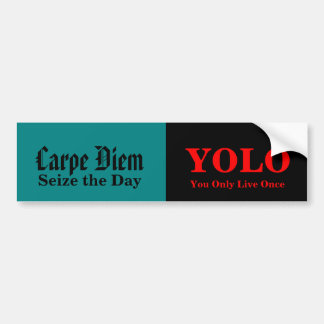 """yolo a contemporary carpe diem Born around 2004 and short for """"you only live once,"""" yolo is the late capitalist predecessor of carpe diem, the rallying cry of a millennial culture tired and pacific standard spoke to chang about the nature of regret and what our modern culture could learn from nietzsche about living with our mistakes."""
