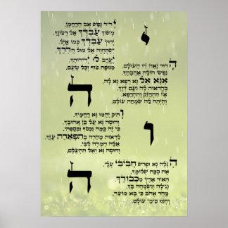 Affiche de Yedid Nefesh