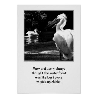 Affiche humoristique de Marv et de Larry