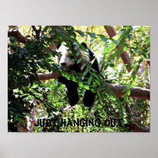 Affiche humoristique de panda de bébé