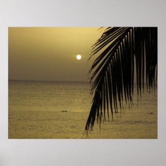 Affiche jamaïcaine de coucher du soleil poster