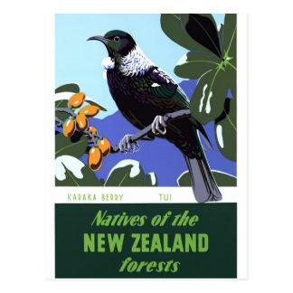 Affiche vintage de voyage de la Nouvelle Zélande Carte Postale