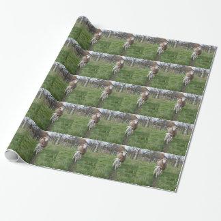 Agneau et moutons papier cadeau