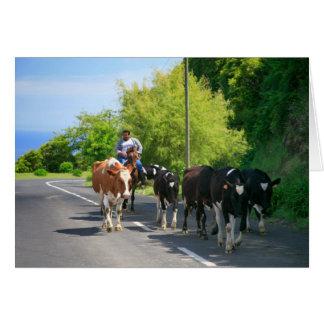 Agriculteur et vaches carte