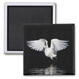 Aimant - ailes de héron de Milou
