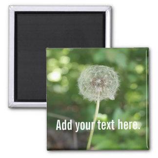 Aimant Ajoutez votre propre texte, photo de pissenlit