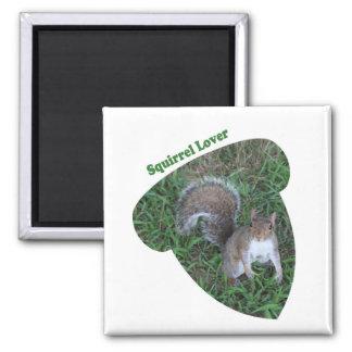 Aimant Amant adulte d'écureuil de gland