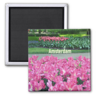Aimant Amsterdam