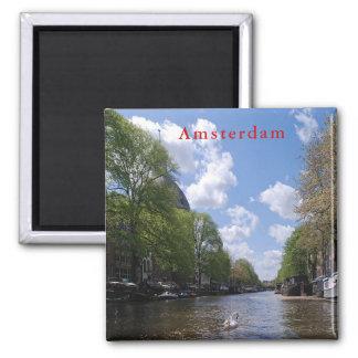 Aimant Amsterdam. Canal. Cygne