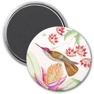 Aimant Animaux floraux de faune de fleurs d'oiseaux de