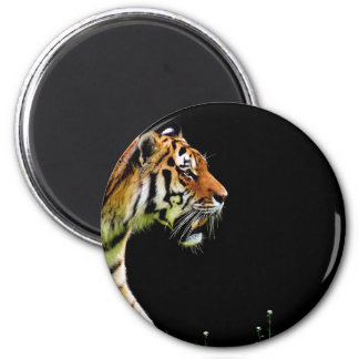 Aimant Approche de tigre - illustration d'animal sauvage