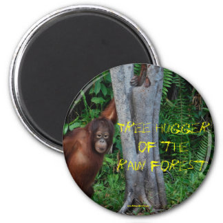 Aimant Arbre Hugger de la forêt tropicale