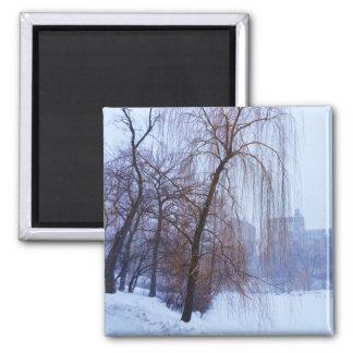Aimant Arbres d'hiver dans le Central Park