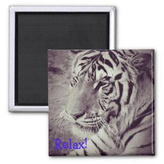 aimant avec l'image d'un tigre noir et blanc