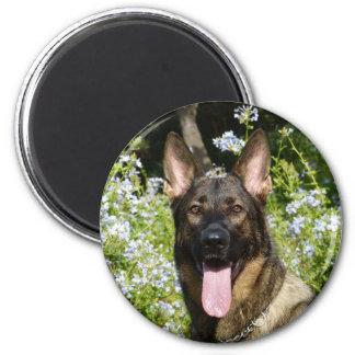 Aimant Beau chien de berger allemand