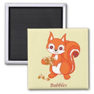 Aimant Bouillonne l'écureuil utile