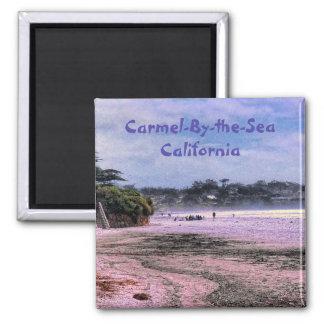 Aimant central de côte de la Californie de plage