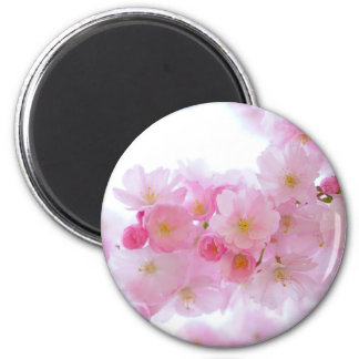 Aimant Cerise du Japon Sakura