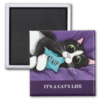 C'est l'aimant d'art de chat de la vie |
