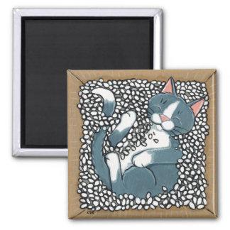 Aimant Chat gris de smoking dormant dans la boîte d'arach