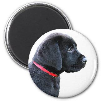 Aimant Chiot noir de Labrador