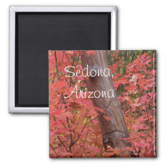 Aimant Chute dans le rose dans Sedona, Arizona