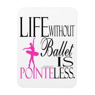 Aimant de ballet de Pointeless Magnet Flexible