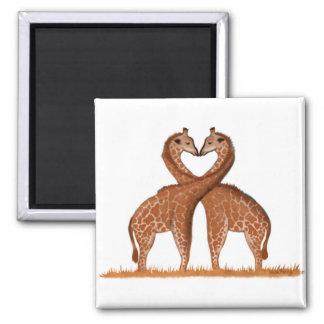 Aimant de coeur d'amour de girafes