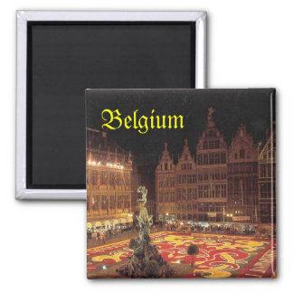Aimant de la Belgique