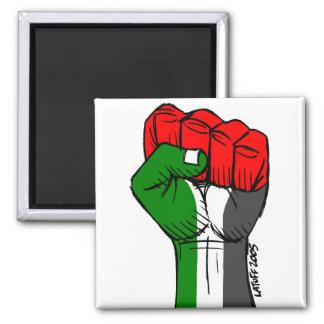 Aimant de la Palestine