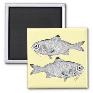 Aimant Dessin vintage étrange de poissons
