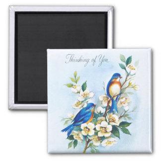 Aimant Deux oiseaux bleus