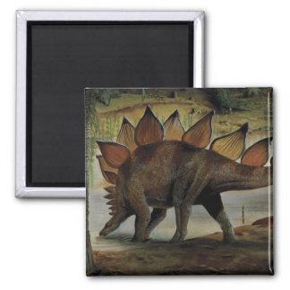 Aimant Dinosaures vintages, Stegosaurus, queue avec des