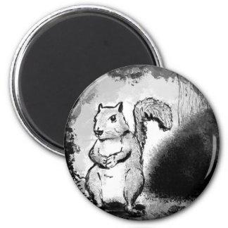 Aimant Écureuil noir d'encre