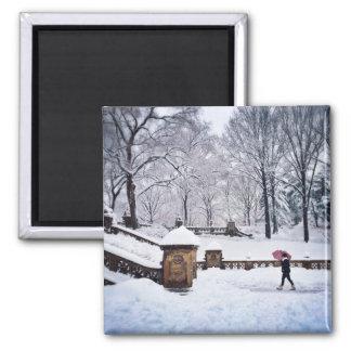 Aimant Escaliers Neige-Couverts dans le Central Park