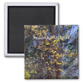 Aimant Feuillage d'or Sedona, Arizona