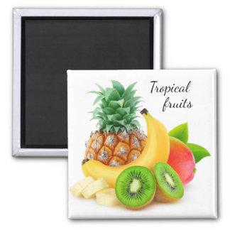 Aimant Fruits tropicaux