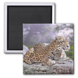 Aimant Jaguar et temple maya