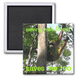 Aimant Jetez un coup d'oeil un primat Bornéo de huer