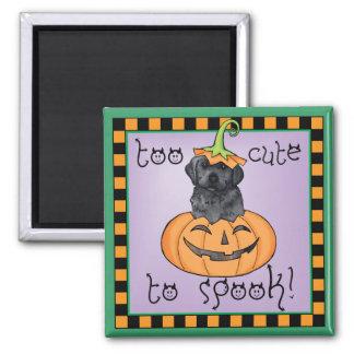 Aimant Laboratoire noir de Halloween