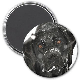 Aimant Labrador noir - globe de neige