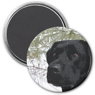 Aimant Labrador noir - pins de scintillement