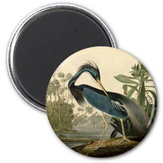 Aimant Oiseau d'eau de héron d'Audubon Louisiane
